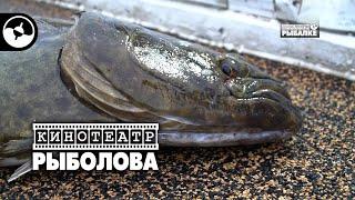 Тв 209 канал диалоги о рыбалке