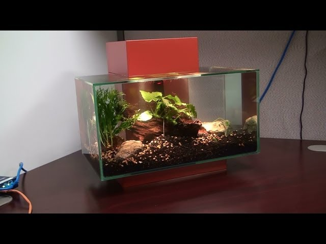 Fluval Edge 6 gallon: Unboxing and Setup