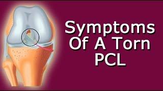 Symptoms of a Torn PCL
