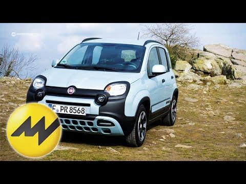 Der neue Fiat Panda: Fit für die Zukunft | Motorvision