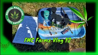 FMC Farmz Vlog 12 things are coming along nicely!!
