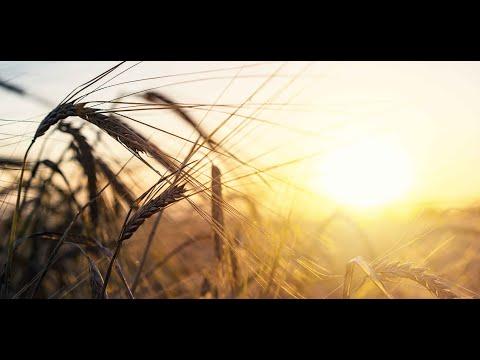 Imagevideo der 7x7 Unternehmensgruppe