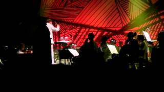 Antony & the Johnsons & Metropole Orkest at Gent Jazz - For today I am a Boy