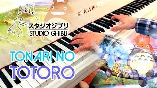 🎵 Tonari no Totoro (My Neighbor Totoro となりのトトロ) ~ Piano cover played by Moisés Nieto