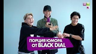 Black Dial ответили на все вопросы!