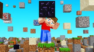 Surviving Minecraft with FALLING BLOCKS (endless)