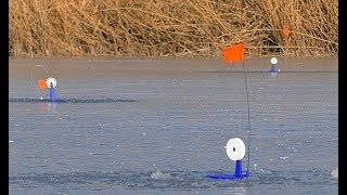 Зима щука рыбалка на жерлицы зимой