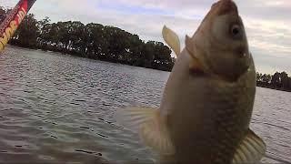 Рыбалка в чернобаево рязань