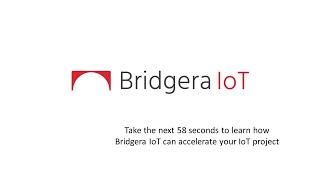 Bridgera LLC - Video - 1