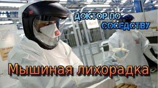 МЫШИНАЯ ЛИХОРАДКА / RAT FEVER