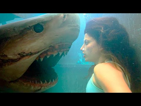 Trailer Deep Blue Sea 3