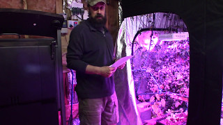 Grow Tent Setup For Growing Vegetables