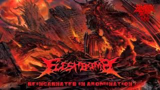 Fleshbomb - Reincarnated In Abomination (2014) {Full-Album}