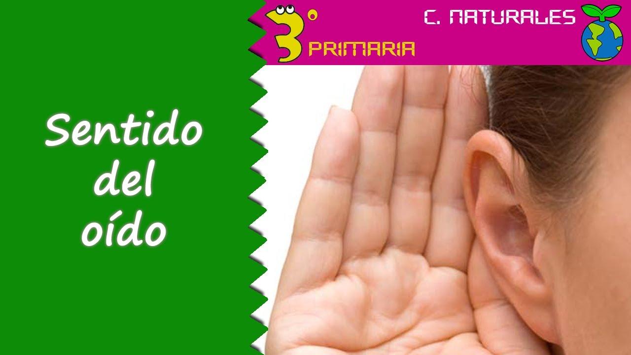 Ciencias de la Naturaleza, 3º Primaria. Tema 2. El sentido del oído