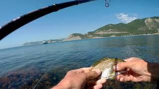 Рыбалка на кипарисовом озере в сукко