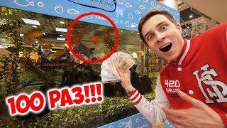 Что Если 100 Раз Покормить Рыбок в Автомате?! / Пушер реакция