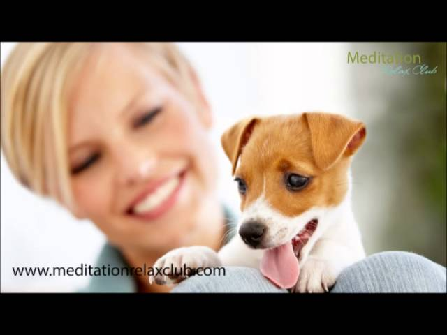 Pet Therapy - Really Relaxing Nature Sounds Music for you and your Pets...Relax! ( ̄▼ ̄)