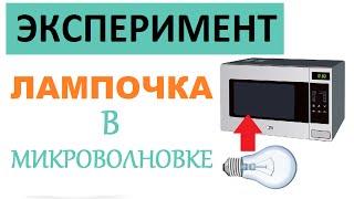 Лампочка в микроволновке   Опыты и эксперименты в домашних условиях