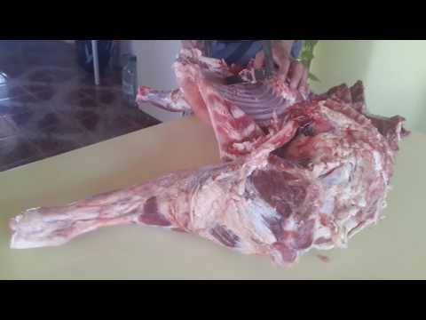 Video Lascano - Localidad El Quebracho x ruta 15