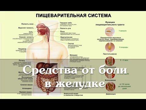 Клиника патогенез вирусных гепатитов с