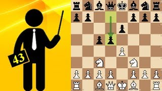 Sicilian Defense, French variation - Standard chess #43