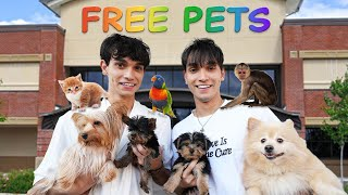 WE OPENED A FREE PET STORE!