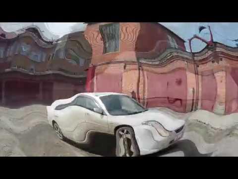 Der Toyota chajs das Benzin oder der Dieselmotor dass ist besser
