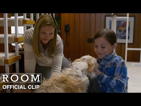 Room (Clip 'Meet Seamus')