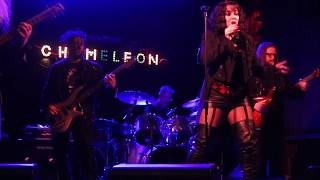 """Anatomy of the Sacred Presents - """"The Woods"""" Live from The Chameleon Club!"""