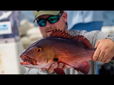 GEOBASS Season 2: Red Bass in Christmas Island by Costa Sunglasses