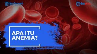Apa Itu Anemia? Kenali Gejalanya dan Simak Penjelasan Berikut Ini!