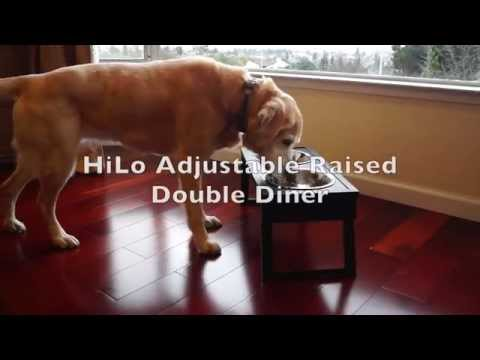 New Age Pet Adjustable Height Diner - Espresso Large Video
