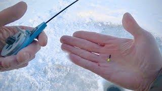 Рыбалка на озере шарташ отчеты о рыбалке 2020