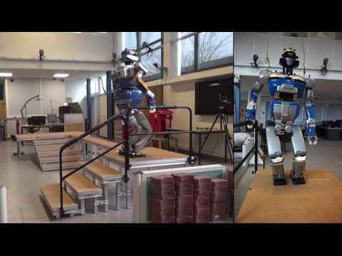 Learning Feasibility Constraints for Multi-contact Locomotion of Legged Robots