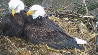 Decorah Eagles,Mom & Dad's Priceless Moment :) 6/30/17