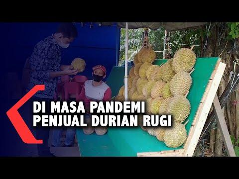 Di Masa Pandemi Penjual Durian Rugi