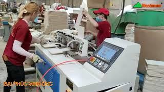MÁY LÀM MỘNG MANG CÁ ĐUÔI ÉN CNC WOODMASTER TRUNG QUỐC Giá tốt nhất thị trường vn 2021