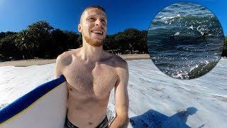 Hai tuli vastaan kun olin surffaamassa meressä Havaijilla