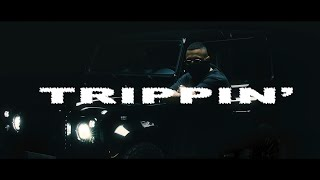 LUCIANO - TRIPPIN