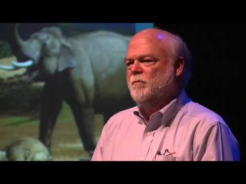 Questions for a Resilient Future 2014: Harry W. Greene