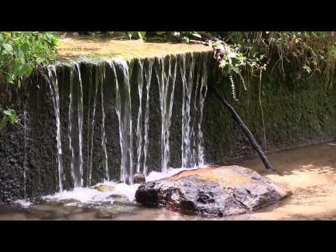 Mulini di Cadegliano: parco dell'Argentera