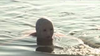 Video Ryby