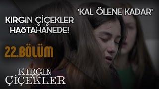 Kırgın Çiçekler 22.Bölüm - Kal Ölene Kadar - Tuna Velibaşoğlu - Klip
