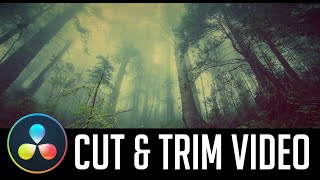 How to Trim and Cut Video (+Shortcuts) – DaVinci Resolve 16 Tutorial