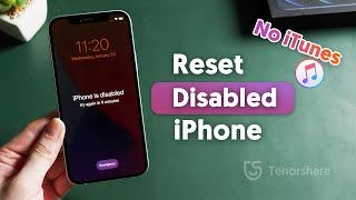 How to Reset Disabled iPhone without iTunes 2021 (2 Ways)