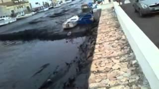 preview picture of video 'Marrobbio a Mazara del Vallo del 25 giugno 2014 IV video'