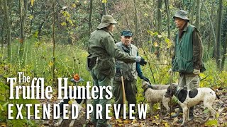 THE TRUFFLE HUNTERS – Extended Preview   Now On Digital & Blu-ray
