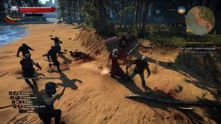 The Witcher 3 GOTY blood mods