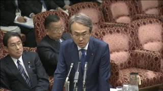 2016.11.14参議院TPP特別委員会「総括的質疑」