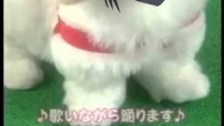愛犬ロボ「一方通行」